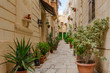 Narrow charming street in Birgu, Malta, with limestone medieval buildings and potted plants along the walls.