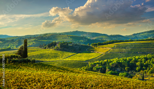 Panzano in Chianti vineyard and panorama at sunset Fototapet