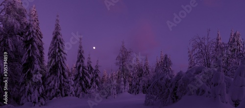 Deurstickers Violet Christmas winter landscape,snowy trees, fresh powder snow, moon on evening sky, mountain forest, bent trees. Scenic panoramic image.Bukova Hora,Czech Republic. .
