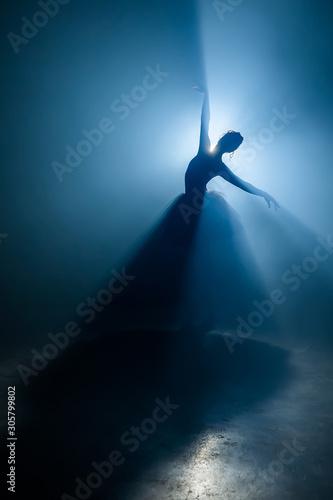 Cuadros en Lienzo Solo performance by ballerina in tutu against backdrop of luminous spotlight