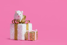 Living Mouse Rat Sits On A Gift Box On A Pink Background.Symbol Of New Year 2020 - White Or Metal (silver) Rat Mouse