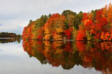 Beautiful Fall Foliage Of New England At Sunset, Boston Massachusetts.