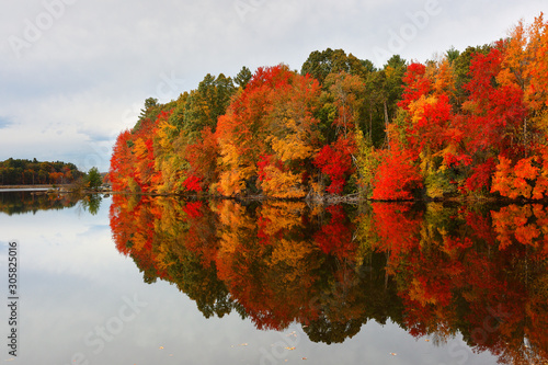 Beautiful Fall Foliage of New England at sunset, Boston Massachusetts Wallpaper Mural