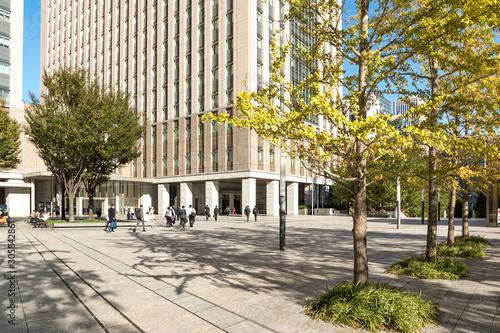 Photo (東京都ー都市風景)オフィスビル街の秋7