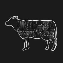 American Meat Cuts Diagram Poster Design. Beef Scheme For Butcher Shop Vector Illustration. Cow Animal Silhouette Vintage Retro Hand Drawn Style Graphic.