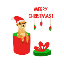 A Cute Meerkat Sitting In A Gift Box.  Marry Christmas Lettering. Vector Illustration In Red And Green Colors For Christmas Greeting Cards, Posters And Xmas Souvenir  Products. Isolated On White.