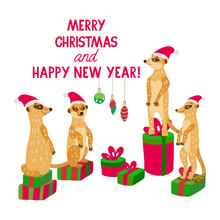 A Happy Meerkat Family Wearing Santa Hats Stands On Gift Boxes. Vector Illustration In Red And Green Colors For Greeting Cards, Posters And Xmas Souvenir  Products. Isolated On White.