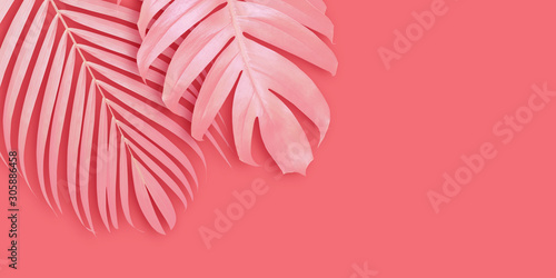 Tropical leaves banner background with copy space Minimal summer