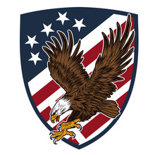 Eagle Made In Usa United States Of America Vector Usa Flag America 2
