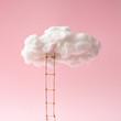 Leinwanddruck Bild - Step ladder leading to clouds . Growth, future, development concept. Minimal pink compostition.