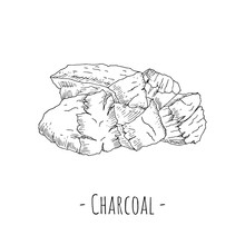 Hand-drawn Isolated Charcoal. Vector Illustration.