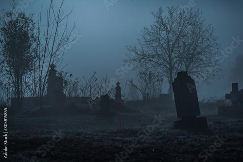 Tablou Canvas Graveyard in fog