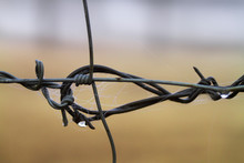 Barbed Wire Fence Closeup With...