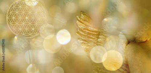 Fotografiet  Banner Blume des Lebens mit Engelsflügel in goldenem Lichterfeld