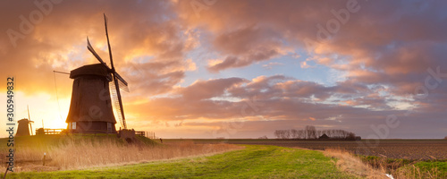 Obraz Traditional Dutch windmills at sunrise in The Netherlands - fototapety do salonu