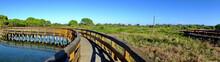 Boardwalk At The Po Delta Bota...