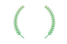 Green  Laurel Wreath Isolated ...