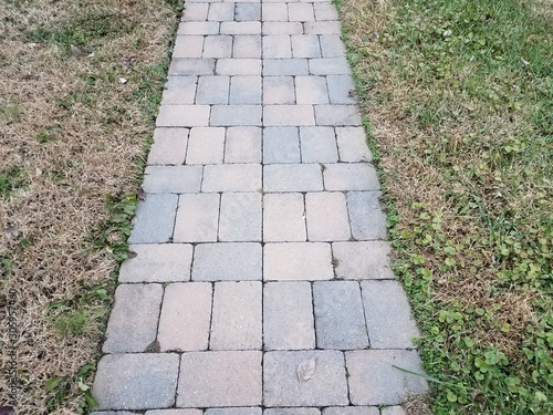 grey stone tiles path with brown and green grass