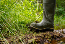 Rubber Boot On The Banks Of Th...