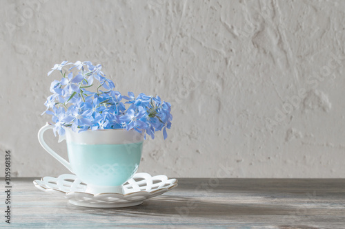 Fotografía periwinkle in cup on wooden table