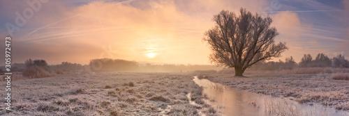 Obraz Sunrise over a frozen landscape in The Netherlands - fototapety do salonu