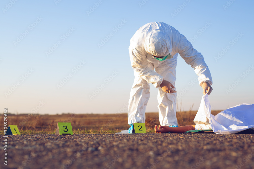 Fototapeta Forensic expert collecting evidence at the crime scene of a murder.