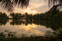Sunset Landscape Of Kerala Bac...