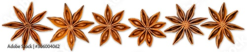 Row set collection of various star anise seasonal christmas ingredient herbs spice decoration  fruit food isolated white panorama background