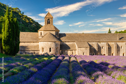 Photo The famous Abbaye Notre-Dame de Sénanque with lavender field in the foreground,