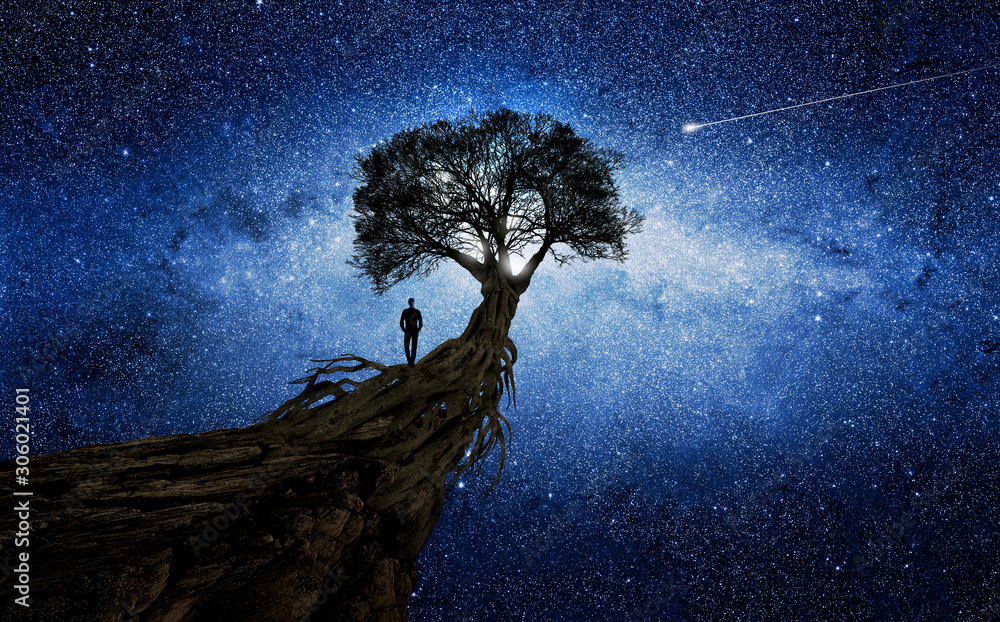 Fototapeta Man under a tree in front of the universe