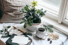 Winter Breakfast Still Life Scene. Moody Christmas Festive Table Setting With Golden Cutlery, Cup Of Coffee, Greeting Card, Eucalyptus And Fir Tree Branches. Potted Hellebores Flowers At The Window.