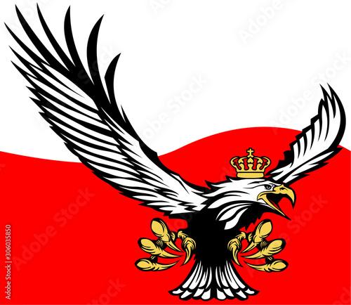 Fotografia, Obraz Polish flag with a crowned eagle - Polish eagle - Poland flag - nation - homelan