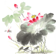 Chinese Painting Of A Lotus Wi...