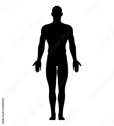 Obraz Anatomical Position Anterior View Male Body Vector Silhouette. - fototapety do salonu