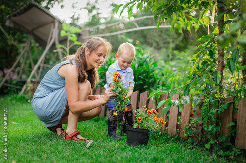 Tablou Canvas Caucasian mom and son transplant flowers in garden