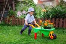 Little Gardener, Child Plant F...