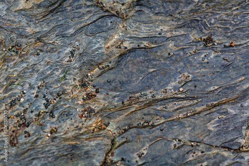 Fotografie, Obraz Struktur, Textur von Stein und flechten in Irland