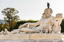 A Black Raven Standing On The White Statue In The  Tuileries Gardens  In Paris, France