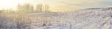 Zimowy pejzaż - panorama