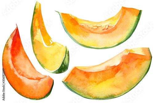 Fotografia pumpkin slices vegetables on isolated white background, watercolor illustration