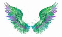Magic Watercolor Green Wing, S...