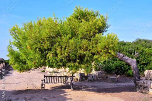 archaeological park of Selinunte Castelvetrano Sicily Wallpaper Mural