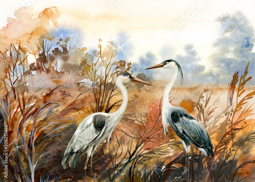autumn landscape with birds  crane, watercolor illustration