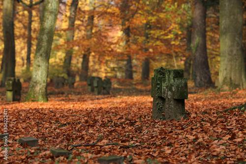 Friedhof Soldatenfriedhof Canvas-taulu