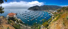 Avalon Harbour On Santa Catalina Island