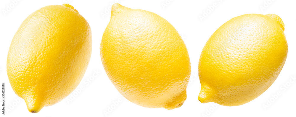 Fototapeta collection of lemon isolated on a white background