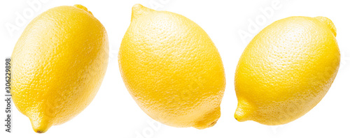 collection of lemon isolated on a white background - 306229898
