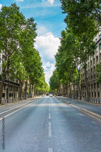 Cuadros en Lienzo Boulevard Saint-Germain in Paris, France