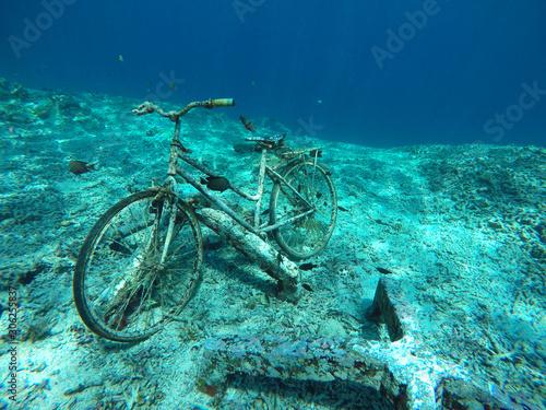 Fotografie, Obraz bike underwater