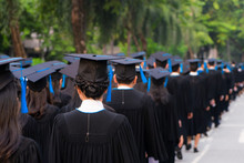 Rear View Of Group Of University Graduates In Black Gowns Lines Up For Degree In University Graduation Ceremony. Concept Education Congratulation, Student, Successful To Study.